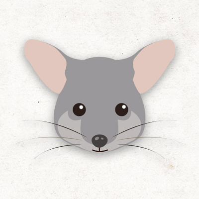 classes_possums_s